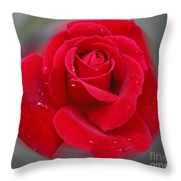Rolands Rose Throw Pillow
