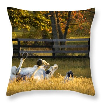 Roll In The Hay Throw Pillow