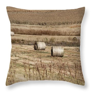 Throw Pillow featuring the photograph Roll On The Hay by Taschja Hattingh