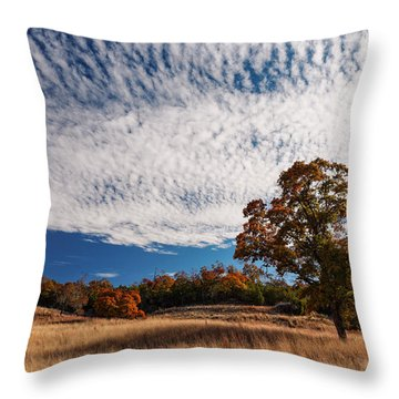 Rolling Hills Of The Texas Hill Country In The Fall - Fredericksburg Texas Throw Pillow