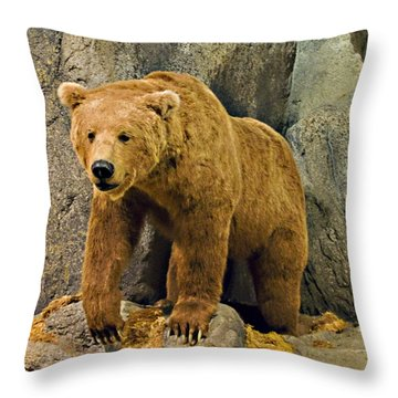 Rolling Hills Wildlife Adventure 1 Throw Pillow by Walter Herrit