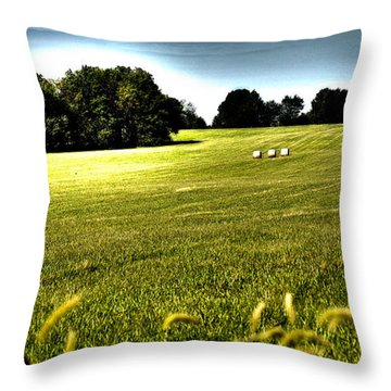 Rolling Pastures Throw Pillow