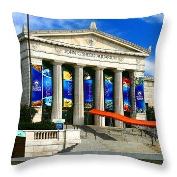 Roman Architecture Throw Pillow