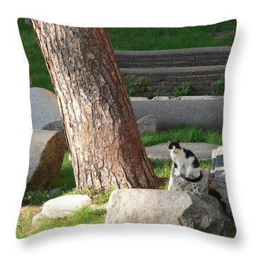 Throw Pillow featuring the photograph Roman Beauty by Evelyn Tambour
