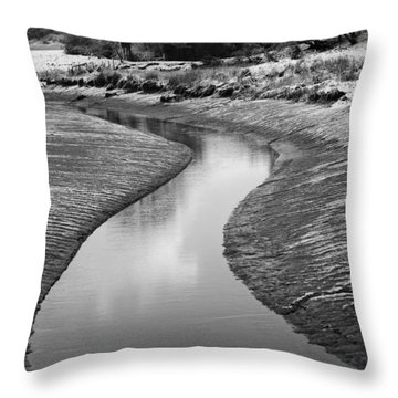 Roman River Bend Throw Pillow by David Davies
