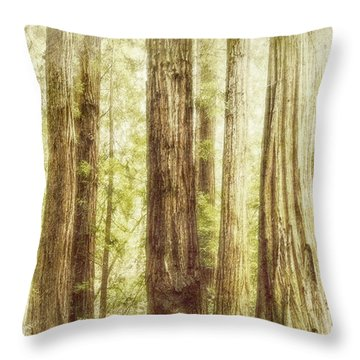 Romantic Forest Muir Woods National Monument California Throw Pillow