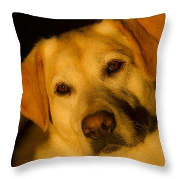 Romantic Pasha Throw Pillow by Jean Noren