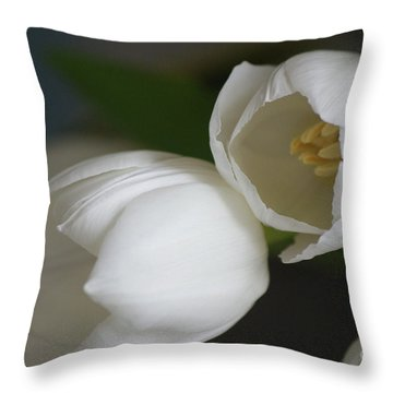 Romantic White Throw Pillow by Carol Lynch