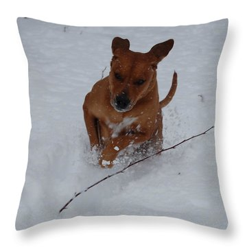 Throw Pillow featuring the photograph Romp In The Snow by Mim White