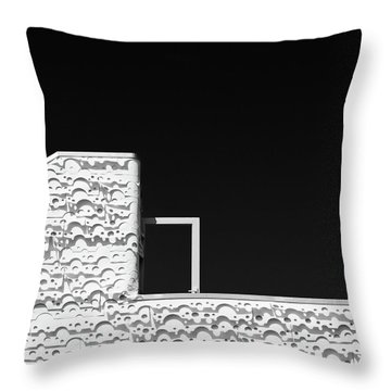 Roof Door Throw Pillow