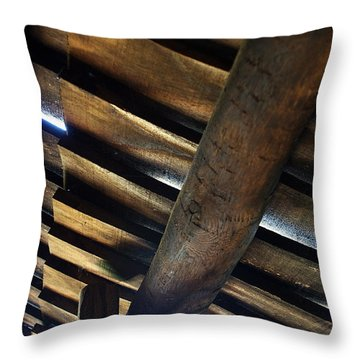 Roofage Throw Pillow