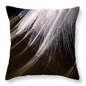 Rookery 23 Throw Pillow