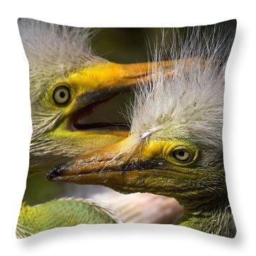 Rookery 7 Throw Pillow