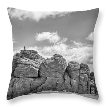 Room On Top Throw Pillow by Howard Salmon