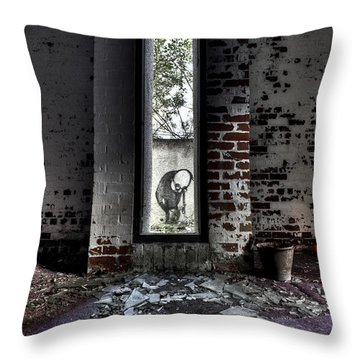 Room With A View Throw Pillow by Roddy Atkinson