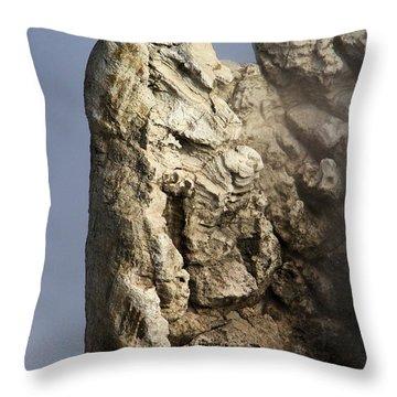 Roosevelt Geyser Throw Pillow by Adam Jewell