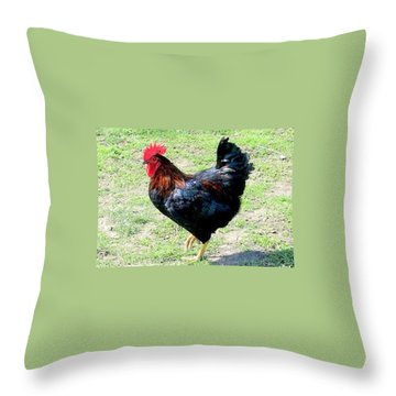 Rooster Throw Pillow by Joyce Woodhouse