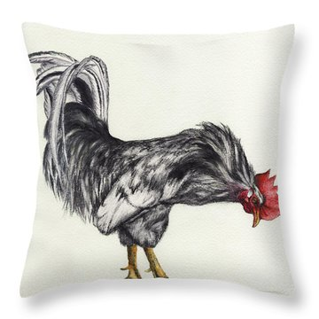 Rooster Throw Pillow by Nan Wright
