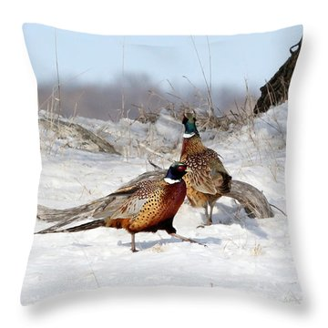Roosters Throw Pillow by Lori Tordsen