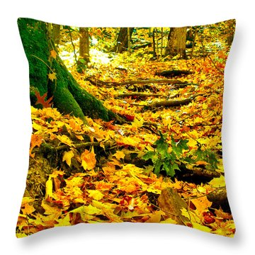 Root Steps Throw Pillow by Zafer Gurel