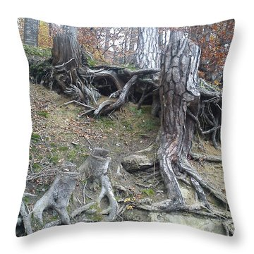 Throw Pillow featuring the painting Roots by Felicia Tica