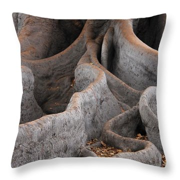 Roots Of The Fig Throw Pillow by Suzanne Oesterling