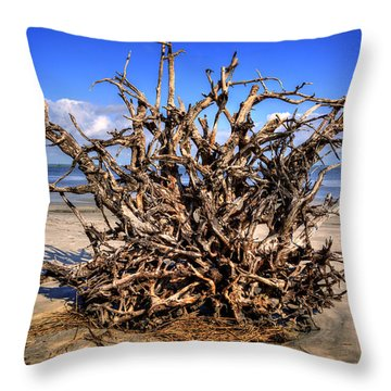 Roots On Jekyll Island Throw Pillow