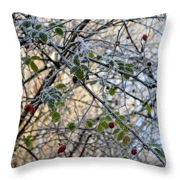 Throw Pillow featuring the painting Rosa Canina  by Felicia Tica