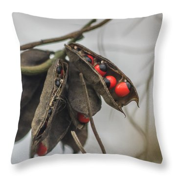 Rosary Pea Throw Pillow by Jane Luxton