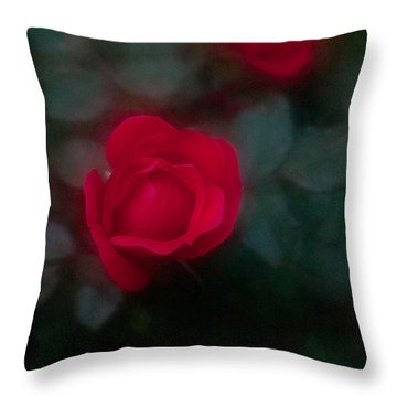 Throw Pillow featuring the photograph Rose 1 by Travis Burgess