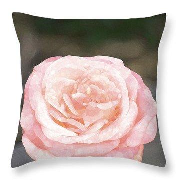 Rose 195 Throw Pillow by Pamela Cooper