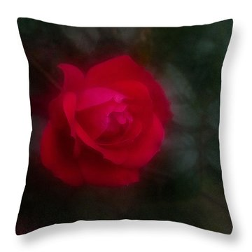 Throw Pillow featuring the photograph Rose 2 by Travis Burgess