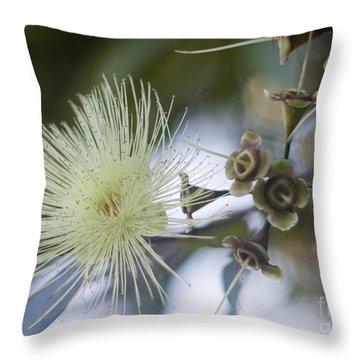 Rose Apple Blossom Throw Pillow