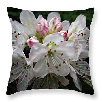 Rose Bay Rhododendron Throw Pillow by William Tanneberger