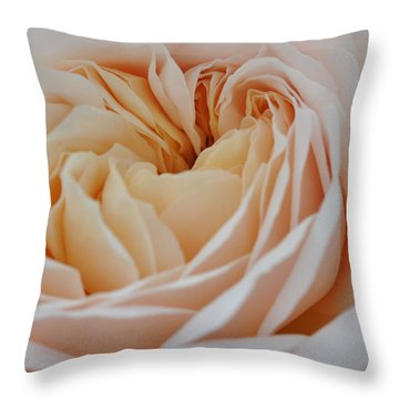 Throw Pillow featuring the photograph Rose Blush by Sabine Edrissi