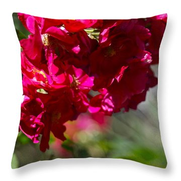 Throw Pillow featuring the photograph Rose Bouquet by Michele Myers