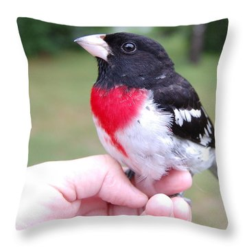 Throw Pillow featuring the photograph Rose Breasted by Mim White