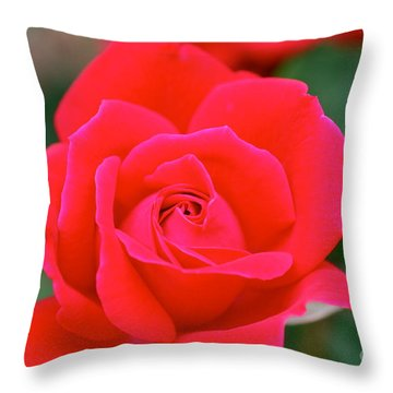 Rose Cascade Throw Pillow by Cathy Dee Janes