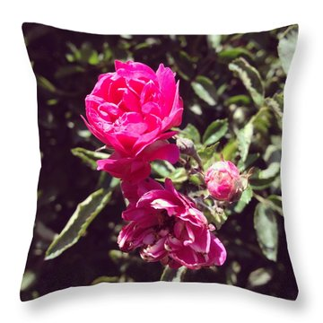 Garden Throw Pillows