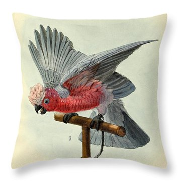 Rose Cockatoo Throw Pillow by Rob Dreyer