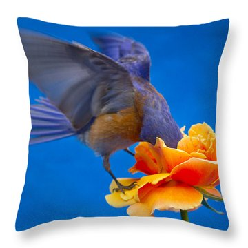 Rose Excavation Throw Pillow