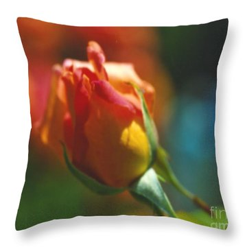 Rose Glow Throw Pillow by Marlene Rose Besso