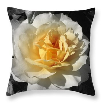 Throw Pillow featuring the photograph Rose by Henry Kowalski