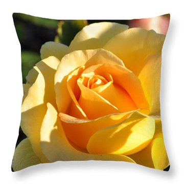 Throw Pillow featuring the photograph Rose - Honey Bouquet by Sabine Edrissi