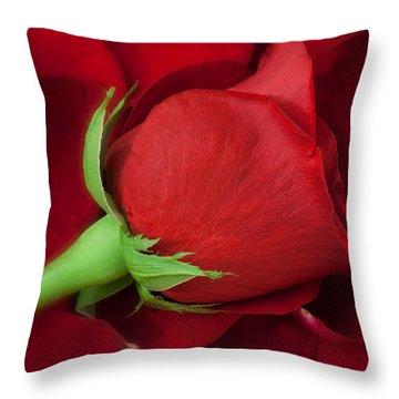 Rose Throw Pillows