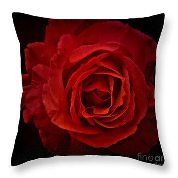 Rose In Red Throw Pillow