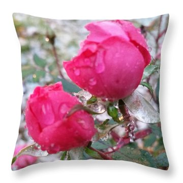 Throw Pillow featuring the photograph Rose In Snow by Rose Wang