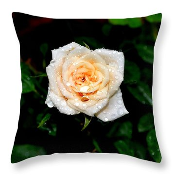 Rose In The Rain Throw Pillow by Deena Stoddard