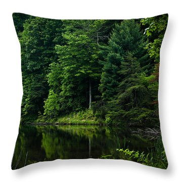 Rose Lake Beauty Throw Pillow
