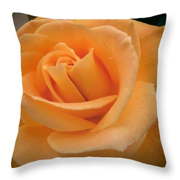 Throw Pillow featuring the photograph Rose by Laurel Powell